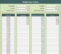 weight tracking sheet elita aisushi co